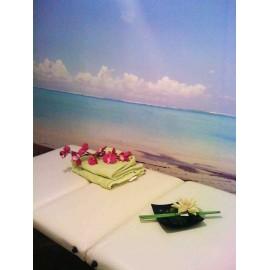 "Massage relaxant Hawaïen ""Lomi Lomi""- 1 heure - Nice"