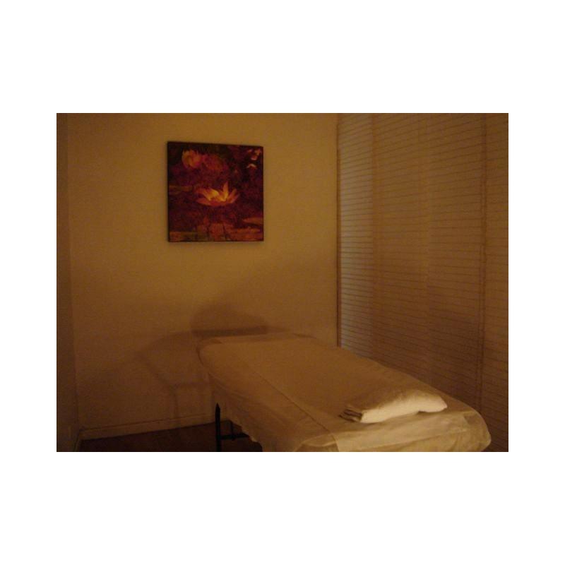 palper rouler paris 2 me 1 heure 15 ventouse minceur palp roul. Black Bedroom Furniture Sets. Home Design Ideas