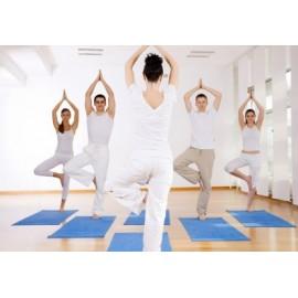 Cours de yoga dynamique - Cours collectif - 1 heure - Paris 9ème