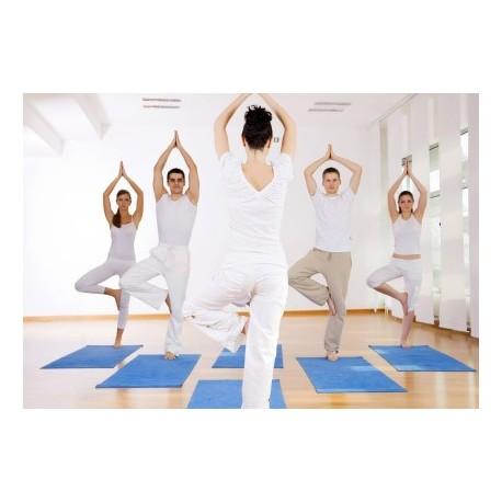 Cours de yoga dynamique - Cours collectif - 1 heure 30 - Paris 9ème